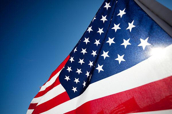 veteransdayflag
