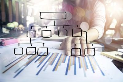 Sales Organization.jpg