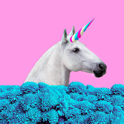 Unicorn Marketing