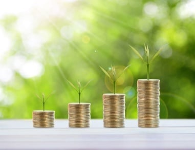Budget ROI From Marketing Investment