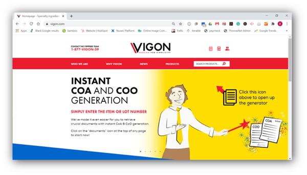 Vigon International