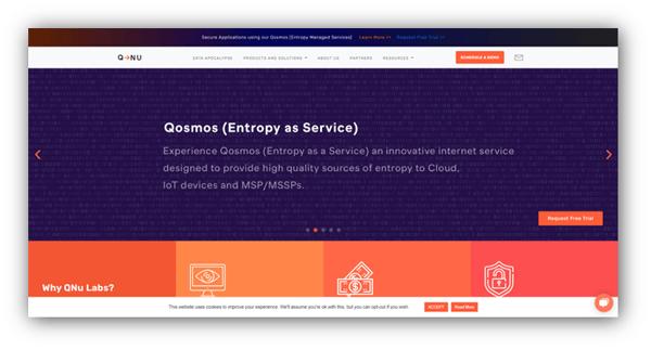 QNu Labs Inc.