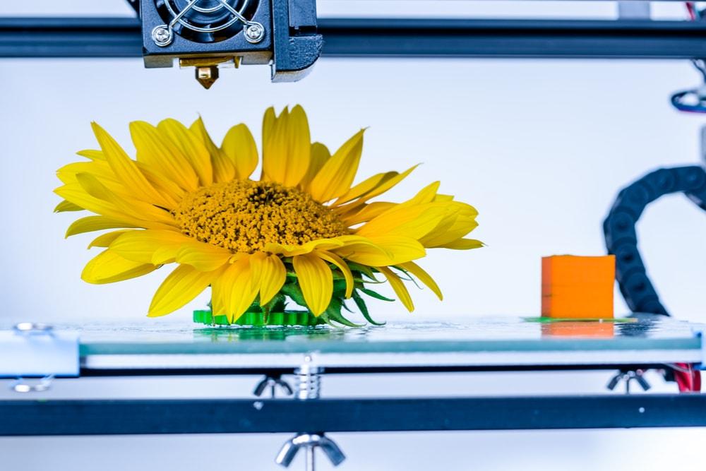 Bioplastic 3D Printer Filaments